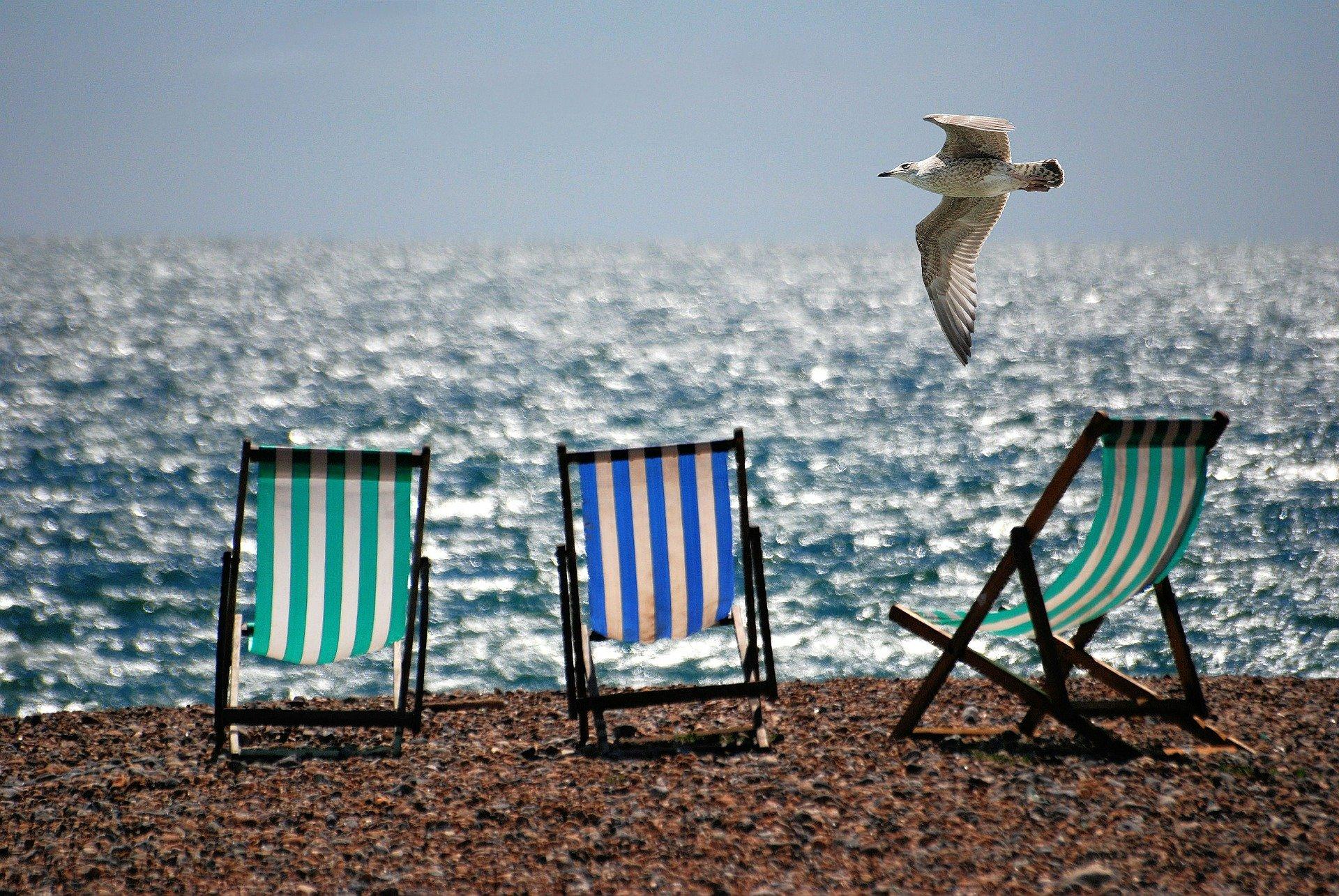 haikus de verano